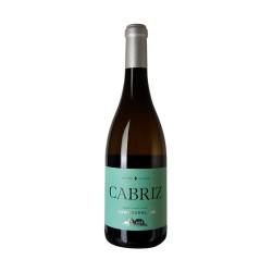 Cabriz Sauvignon Blanc Branco 2019