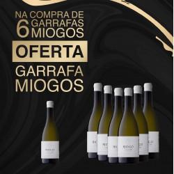 Pack Miogo Escolha da Família Branco 2018